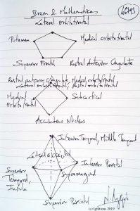 46793 - Brain & Mathematics. (Dessin)