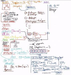 52134 - e-Masterclass: Το πνεύμα των Χαμαιλεόντων IV. (Dessin)