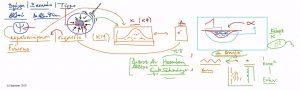 52528 - II - e-Masterclass: Το πνεύμα των Χαμαιλεόντων III. (Dessin)