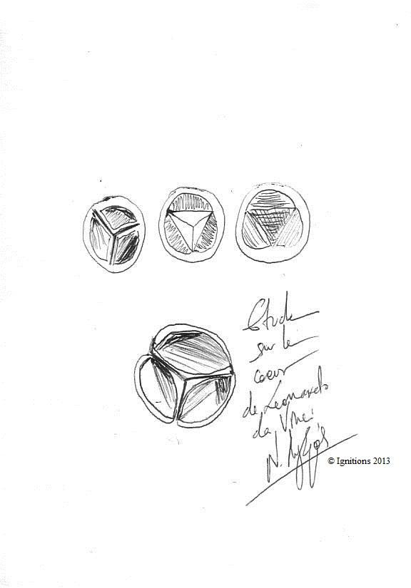 Etude sur le coeur de Leonardo da Vinci. (Feutre sur papier A5)