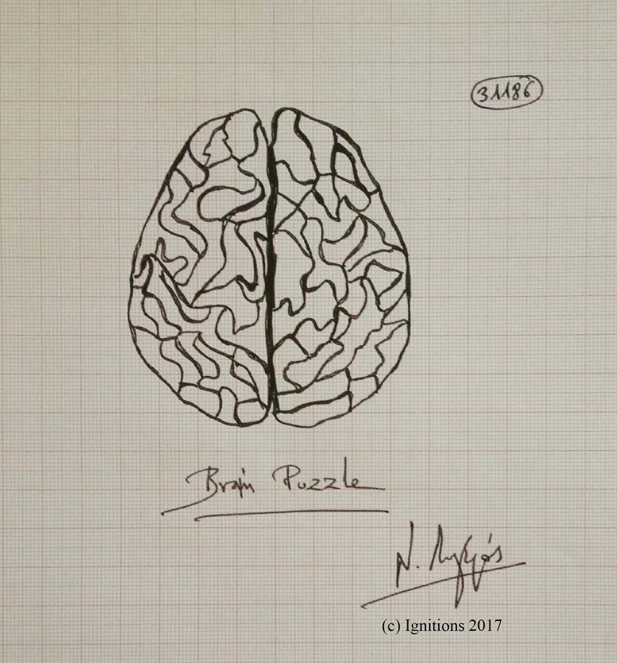 Brain Puzzle. (Dessin au feutre).