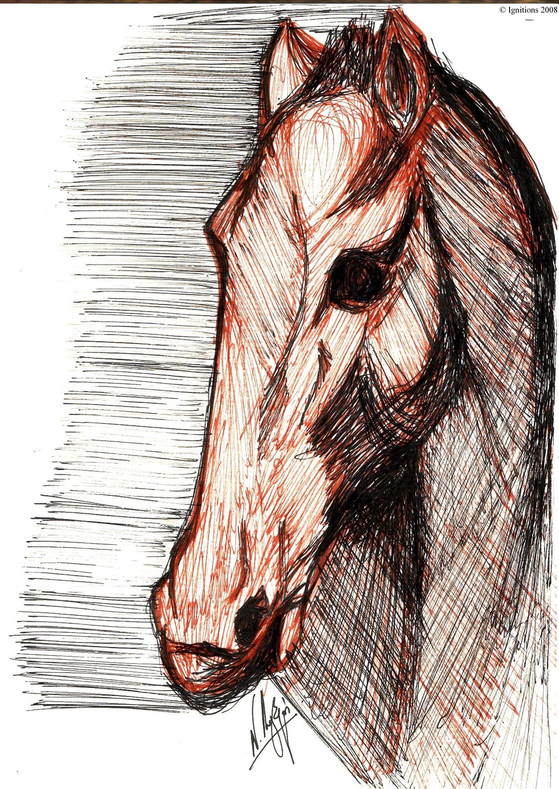 Etude de tête de cheval de Leonardo da Vinci.