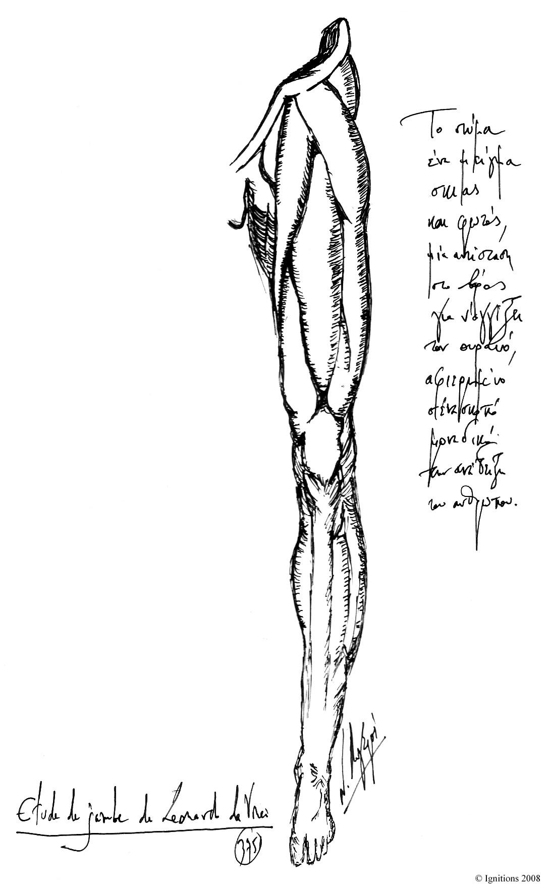 Μελέτη ποδιού του Leonardo da Vinci, Etude de jambe de Leonardo da Vinci.