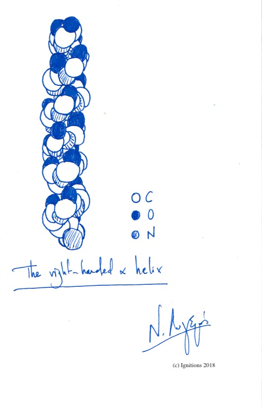 The right-handed a helix. (Dessin)