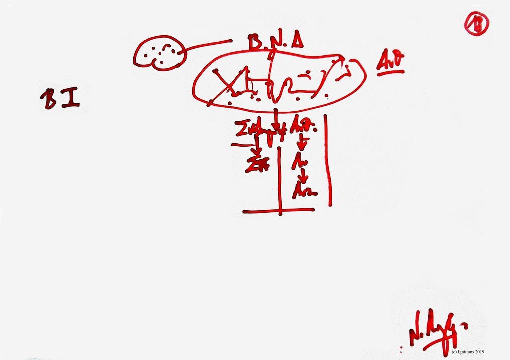 9ο Masterclass Τοποστρατηγικής και Χρονοστρατηγικής - XVIII. (Dessin)