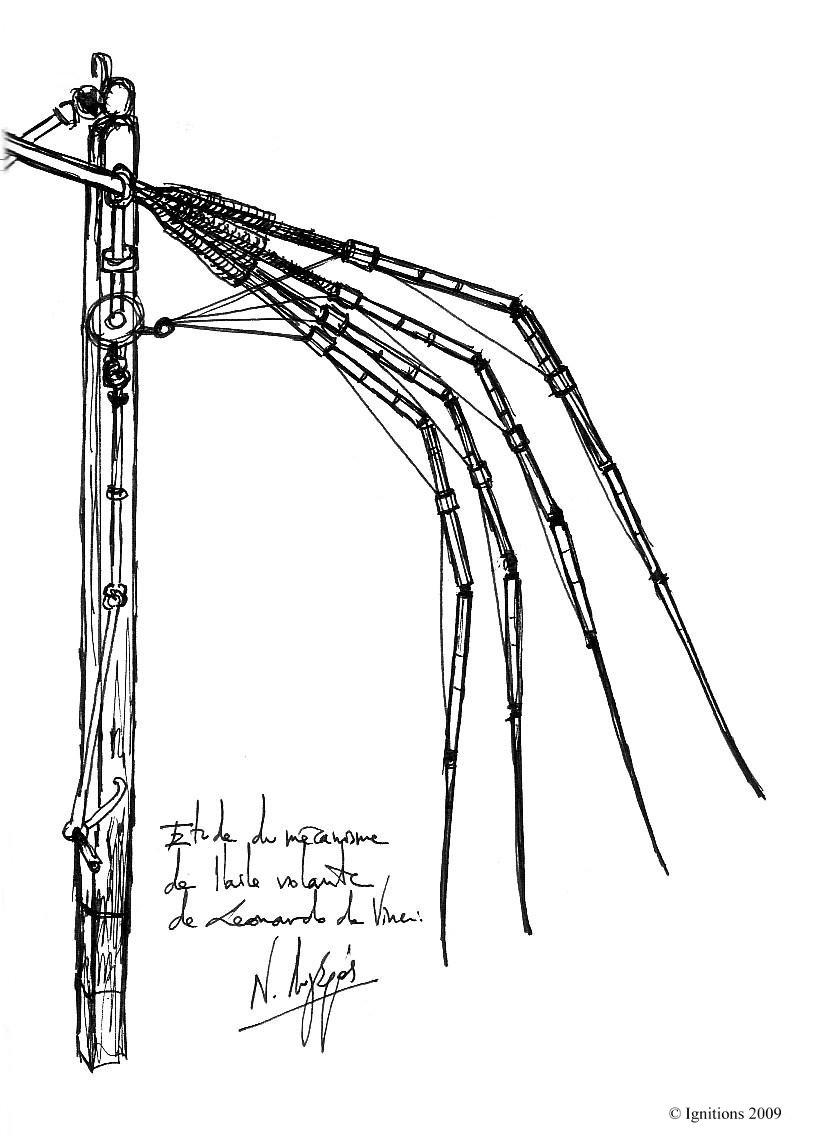 Etude du mécanisme de l'aile volante de Leonardo da Vinci.