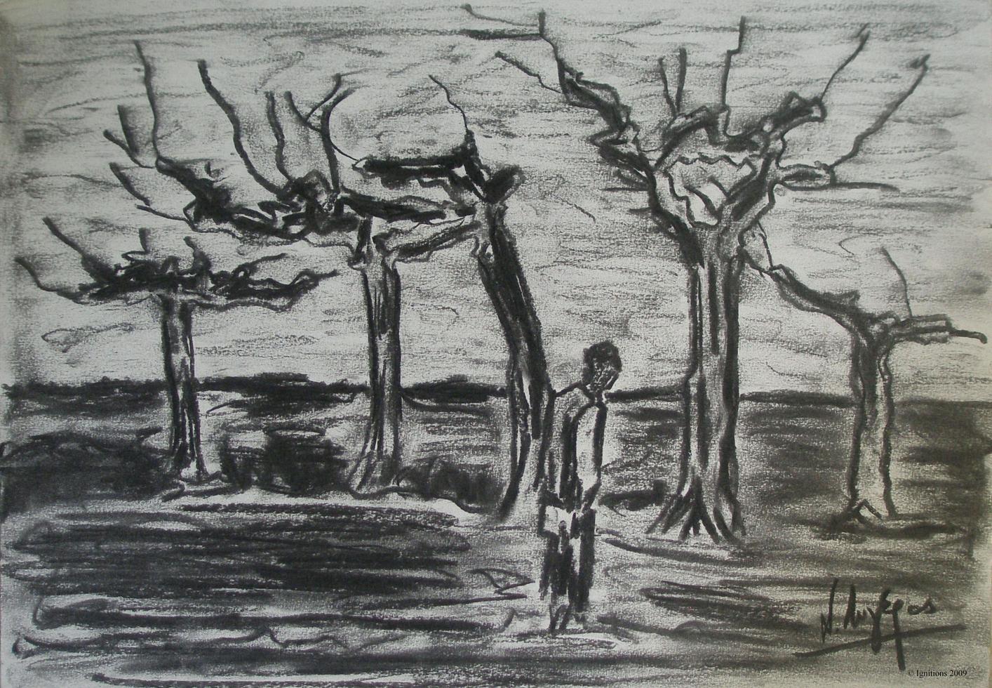 Les Hêtres étêtés de Vincent.