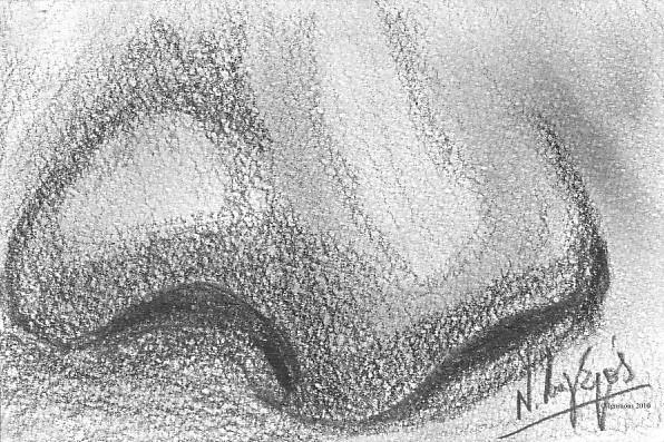 Détail du nez de Ginevra de Leonardo da Vinci.