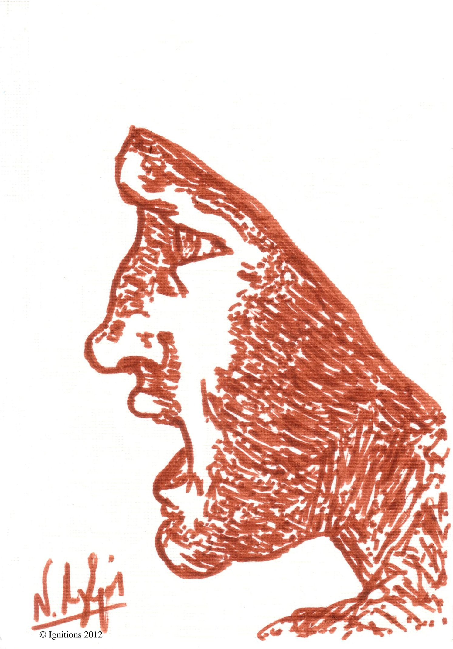 Tête de guerrier de Leonardo da Vinci.